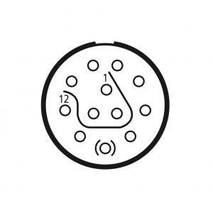 СНЦ146-12/12-В1О11-1 Соединитель